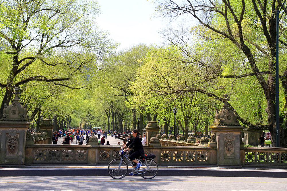 Central Park Sightseeing Bike Tour - Discover an oasis in the middle of the NYC metropolis. Do as the locals do and cycle through Central Park, stopping at famous attractions such as Strawberry Fields, Shakespeare Garden and Cherry Hill fountain. Featured in films, television, art and literature, Central Park is a key part of New York's character. The complete Central Park experience - join a 2-hour bike tour with an expert guide and discover the park highlights. Alternatively, explore Central Park at your own pace with bicycle rentals.