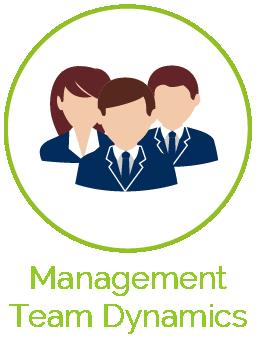 Management Team Dynamics