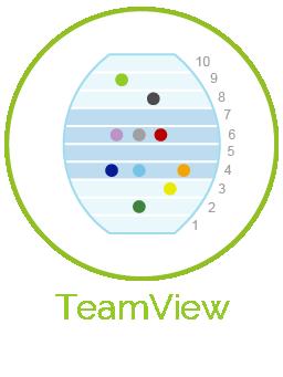 TeamView