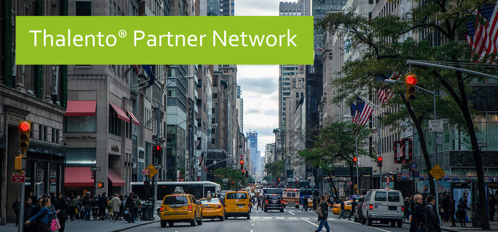 Thalento® Partner Network.jpg