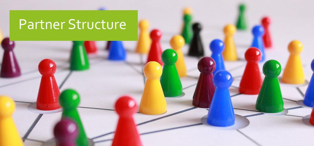 Partner Structure.jpg