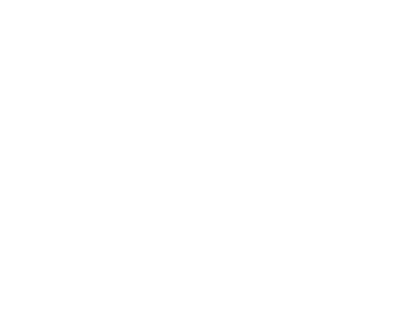 Barrows Insurance Agency Inc.