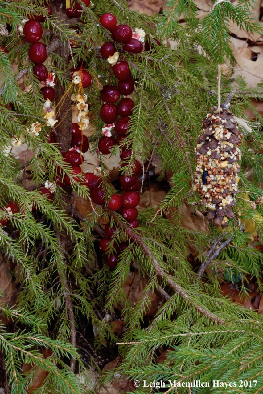 f-ornaments-3.jpg