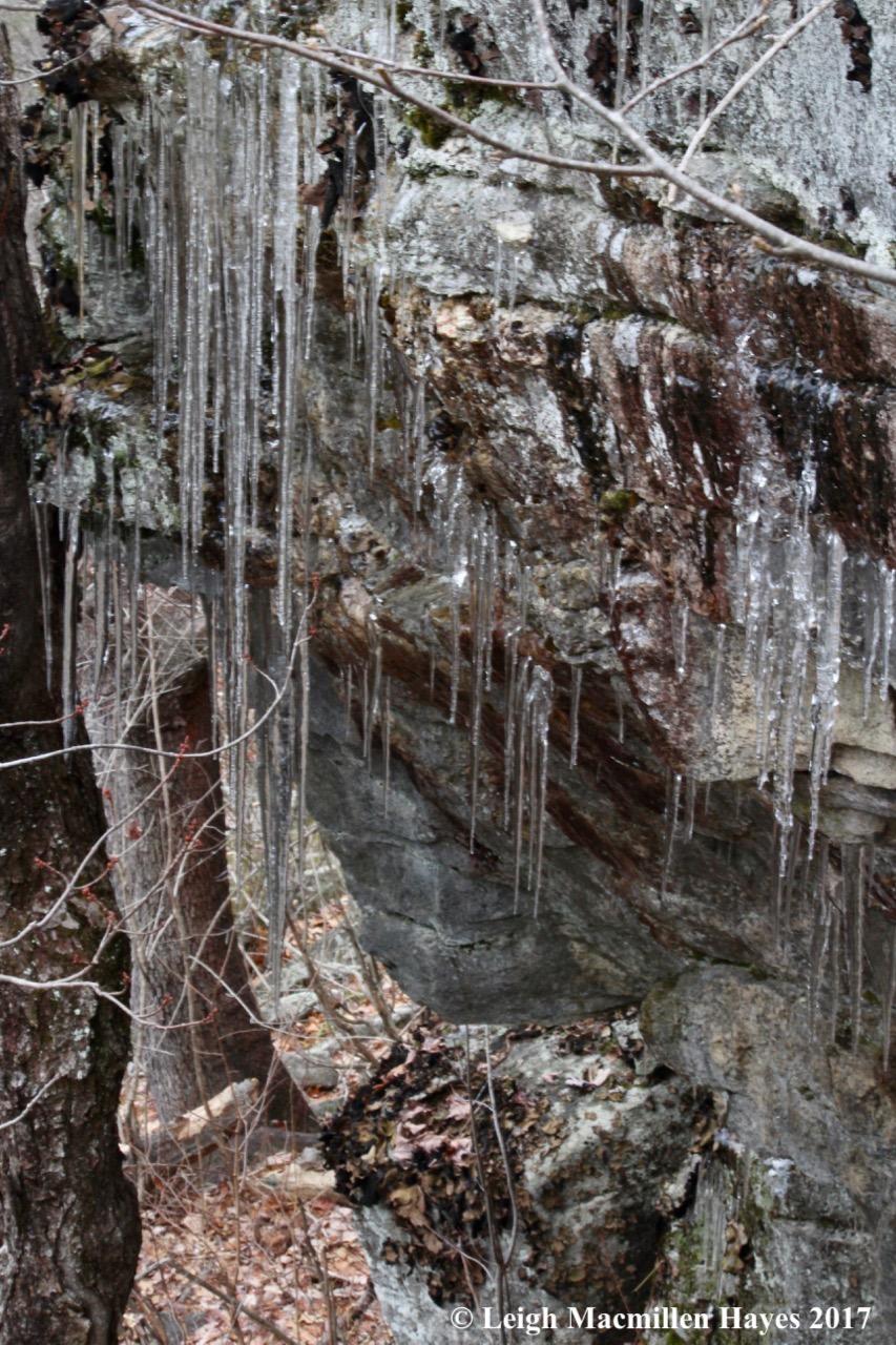 f-ice-2.jpg