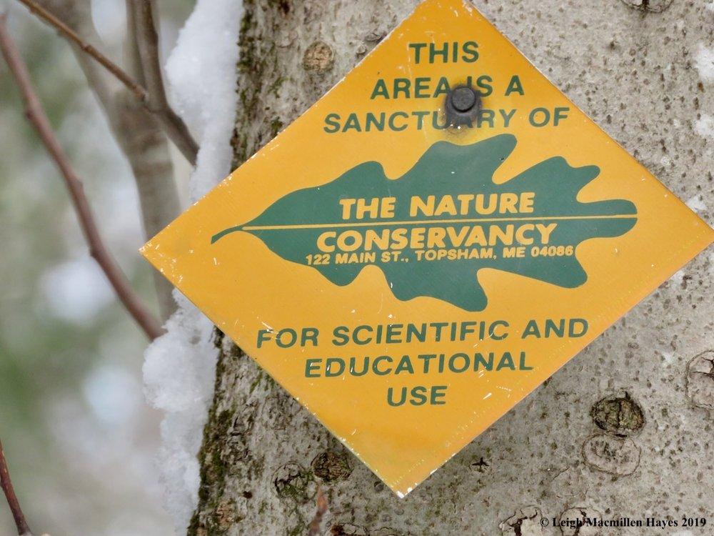17-nature-conservancy.jpg