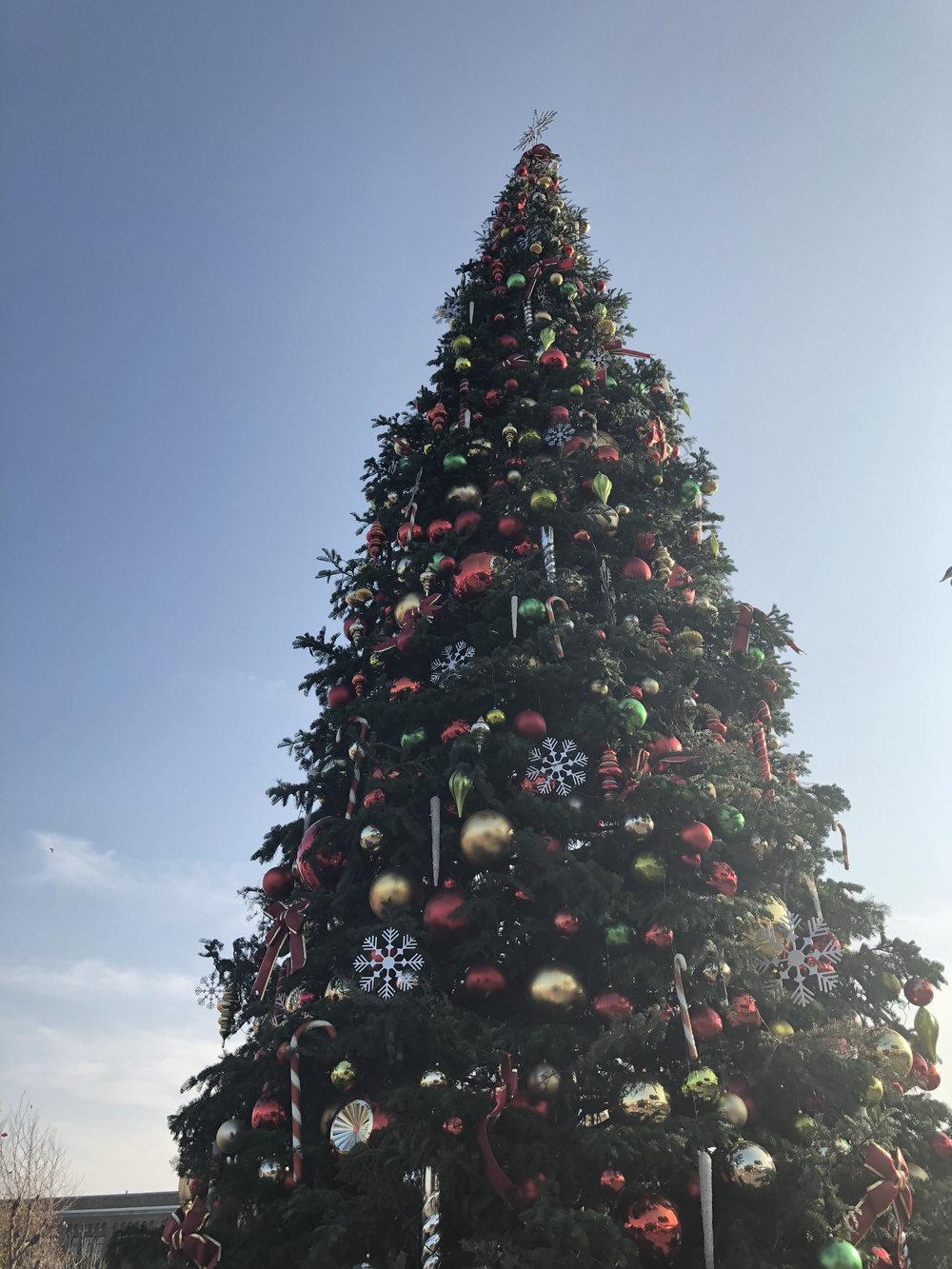 El árbol de Navidad en   Pier 39