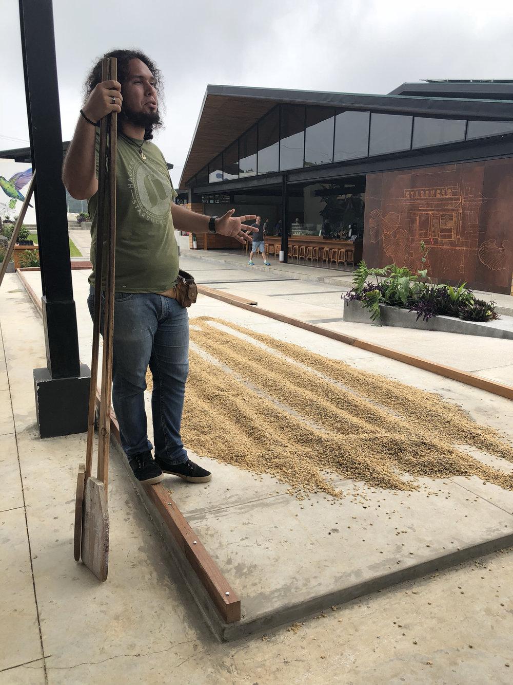Nuestro guía explicando el proceso de secar las semillas bajo el sol