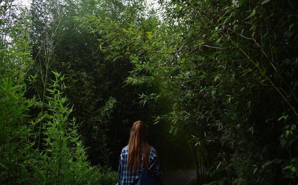 Siempre hay una salida. Aunque no puedan verla en el momento.