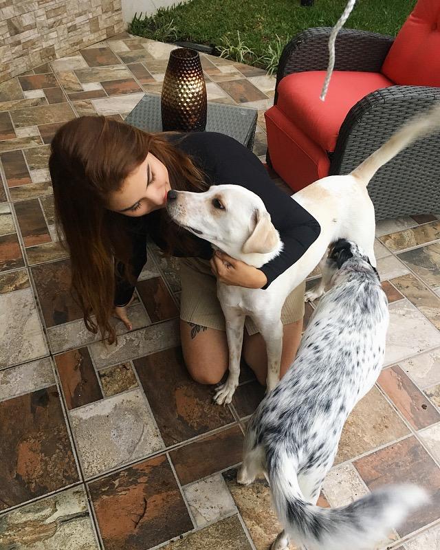 Si tienen mascotas en la casa, pasen un rato con ellos cuando se sientan un poco mejor! Su entusiasmo es contagioso.