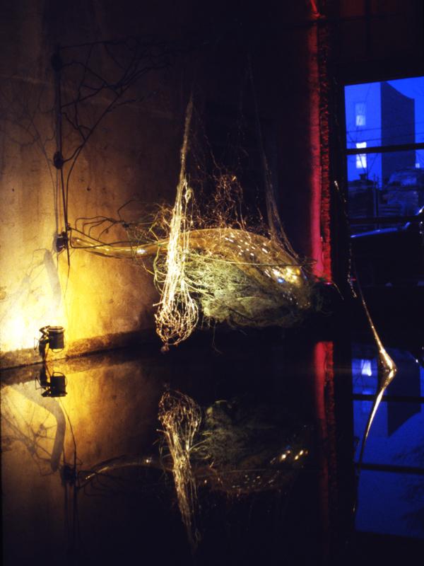 Hydroza, 1994