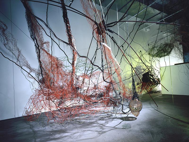 Corpo Onbrosso, 1993, The Rotunda Gallery, Brooklyn NY