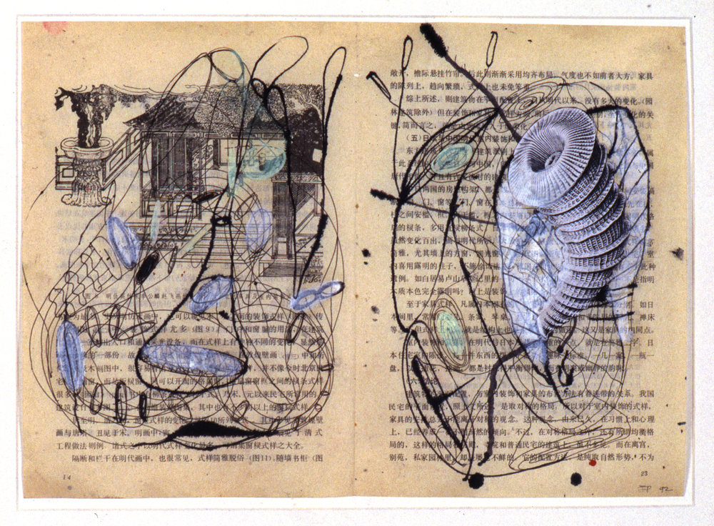 The Bivalves G (7 of 9), 1992