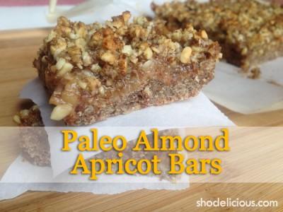 paleo-almond-apricot-bars-title-e1366840279942.jpg