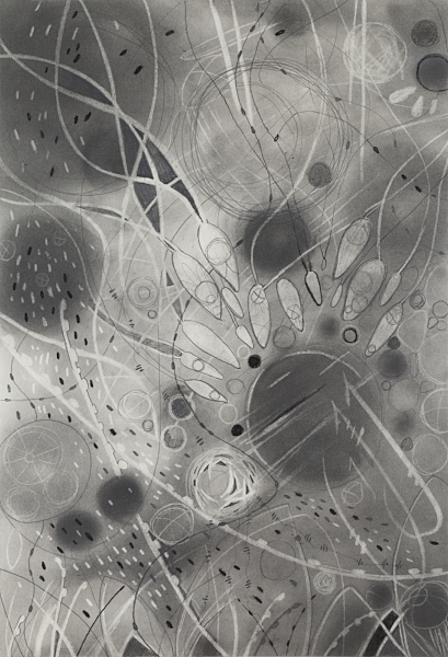"PROTO I   Graphite powder and pencil, Chinese white on paper.  17""x24"" FRAMED   $525     Back to Gallery"