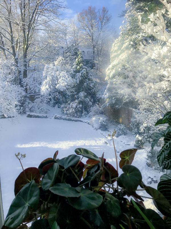 FLH_Winter_Window_Shot_V02-600.jpg