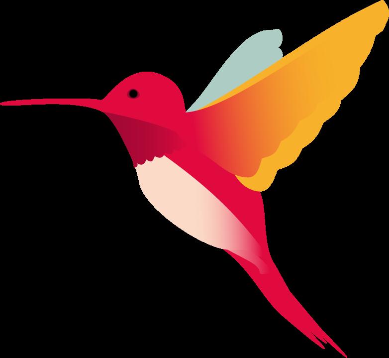 hummingbird_final.png