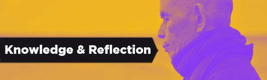 Here are a few recently posted articles that provide insight and reflection on the art and science of waging nonviolence.