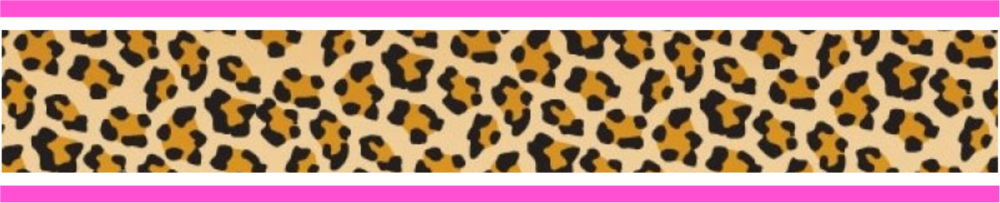 Leopard and Pink Banner for Web.png
