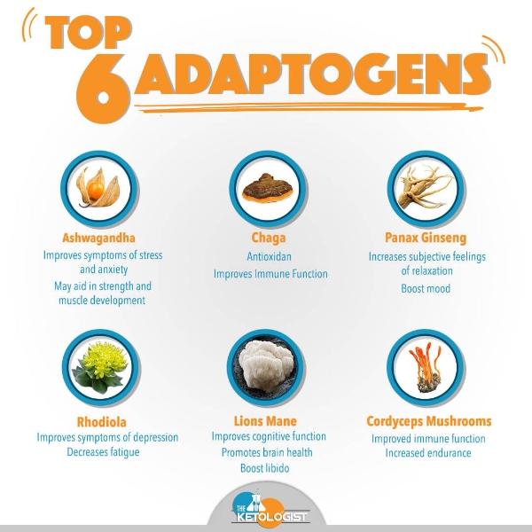 Top 6 Adaptogens.jpg