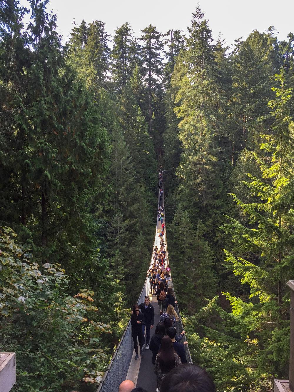 Hannah Barton - Monarch Homes Vancouver, Mt. Rainier, and Seattle Vacation 03.jpg