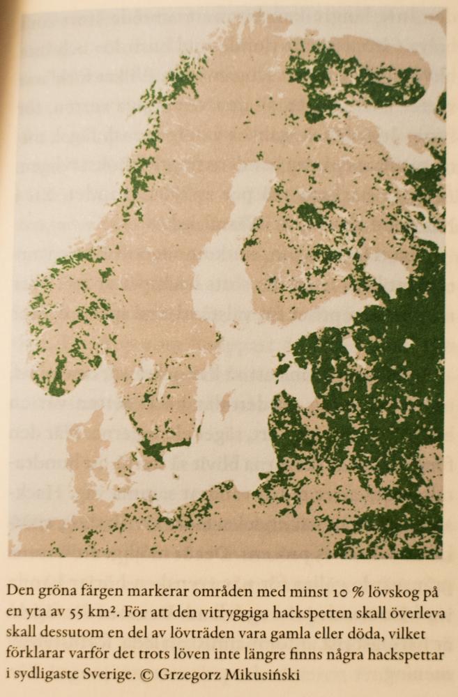 karta lövskog-2845