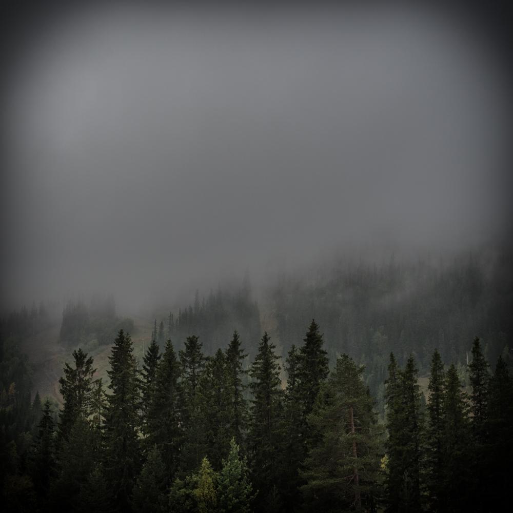 Dimma i bergen