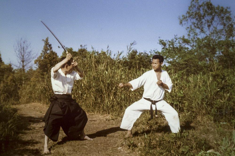 Karate 101