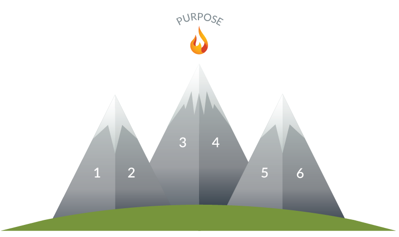 PurposeDriven Profile Graphic-01.png