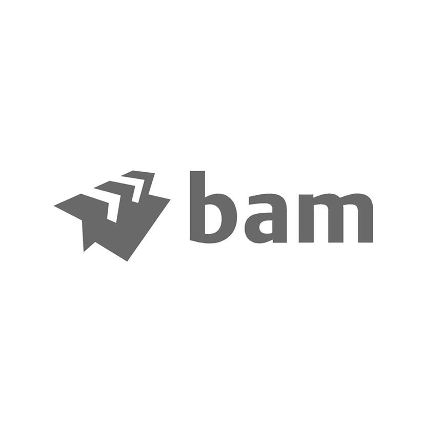 Logo BAM.jpg