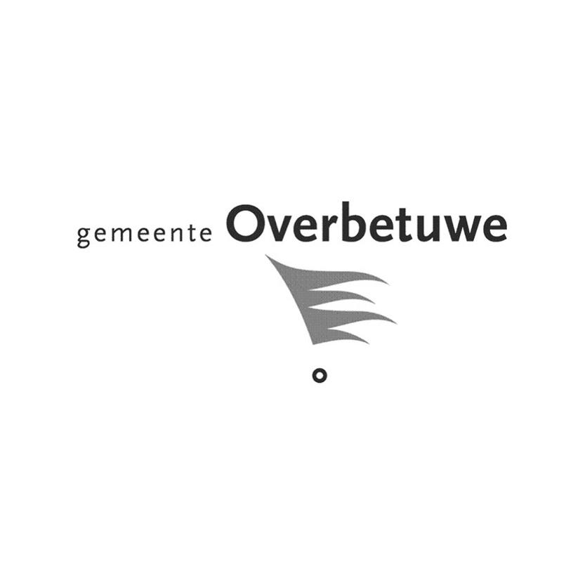 Logo Gemeente Overbetuwe.jpg