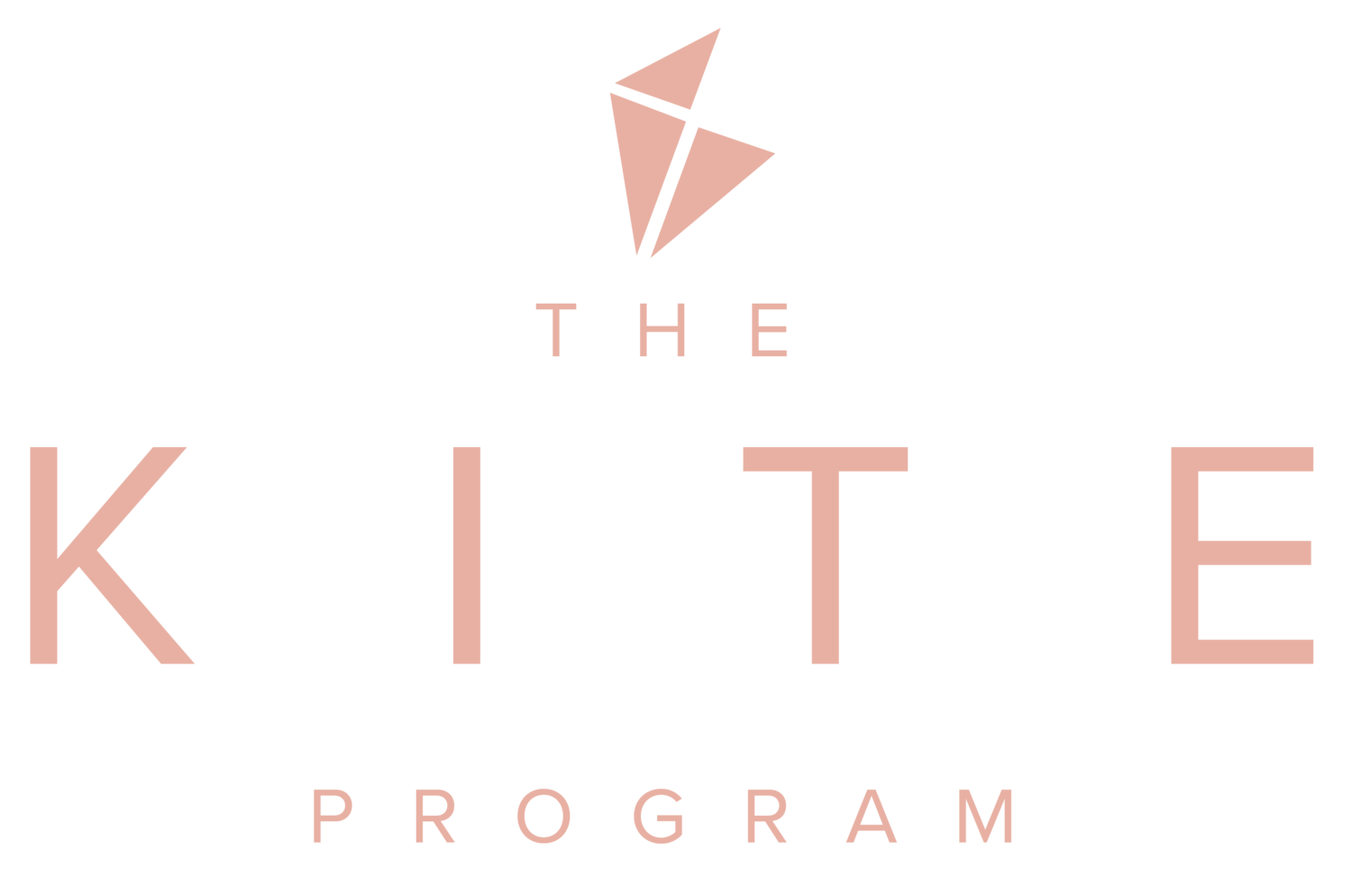 The KITE program