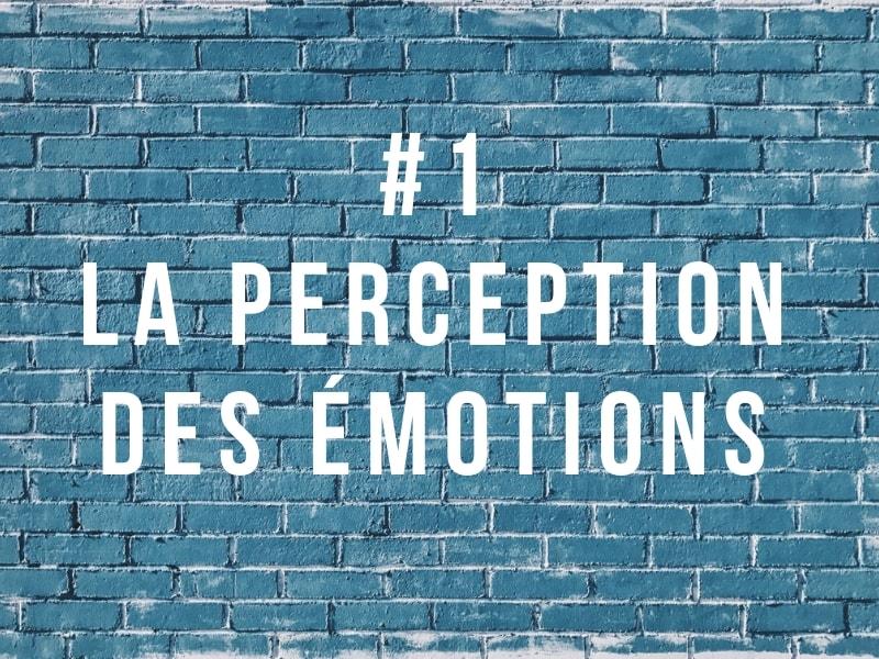 Intelligence émotionnelle : perception des émotions