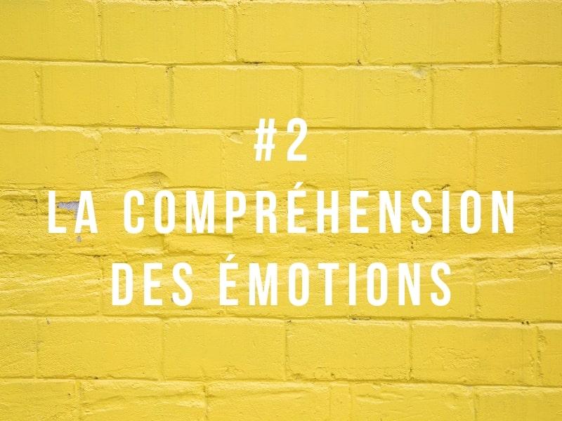 Intelligence émotionnelle #2 la compréhension des émotions