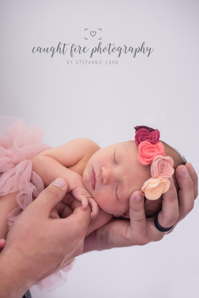Maryland Newborn Portrait 1.jpg