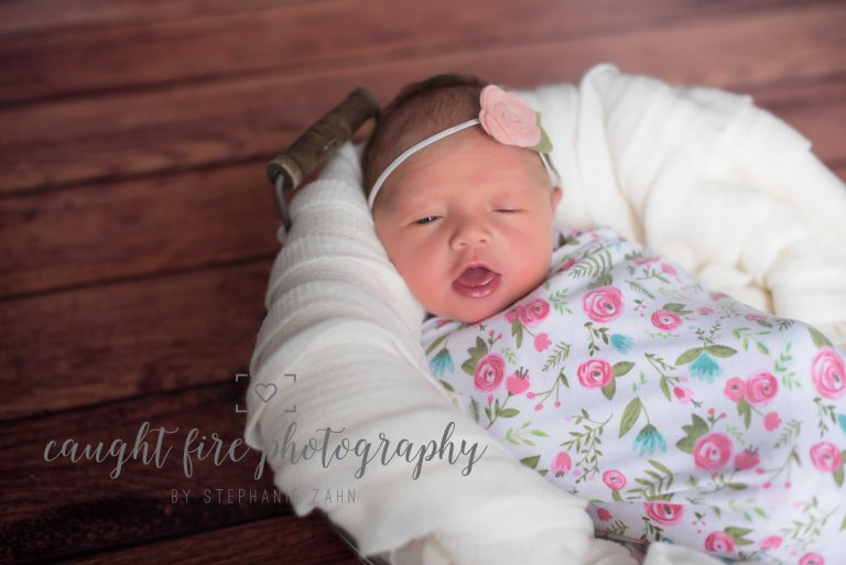 Maryland Newborn Portrait 2.jpg
