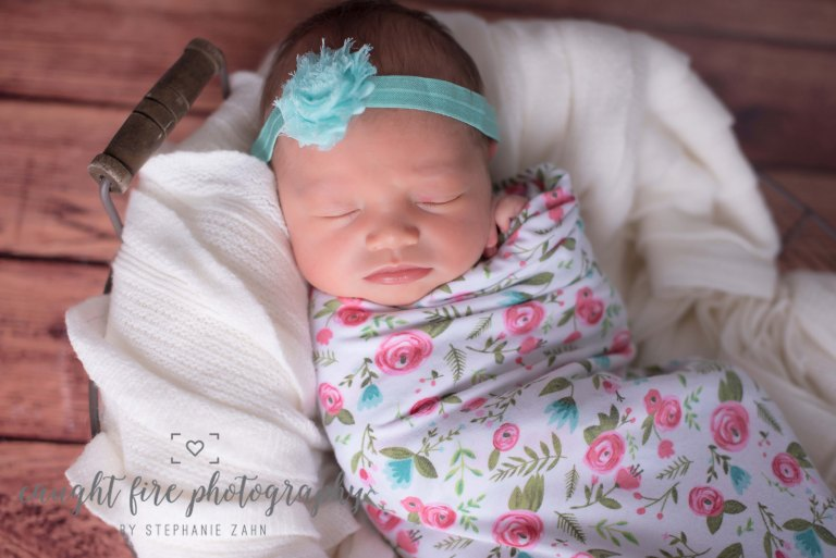 Maryland Newborn Portrait 3.jpg