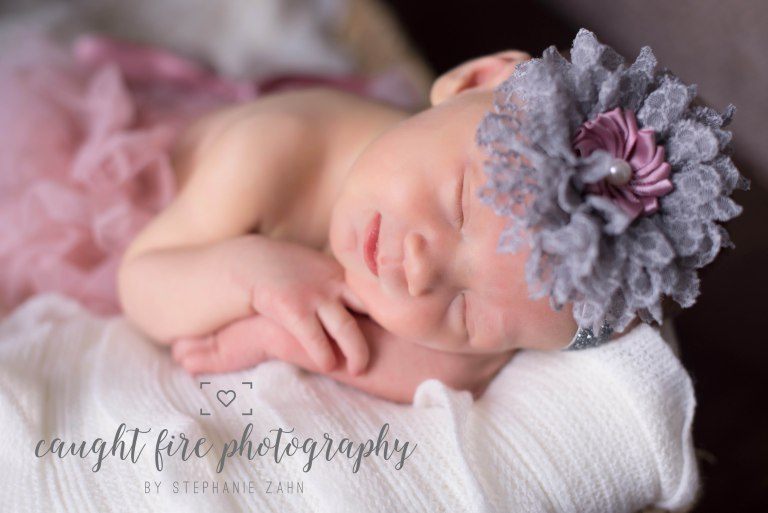 Maryland Newborn Portrait 8.jpg
