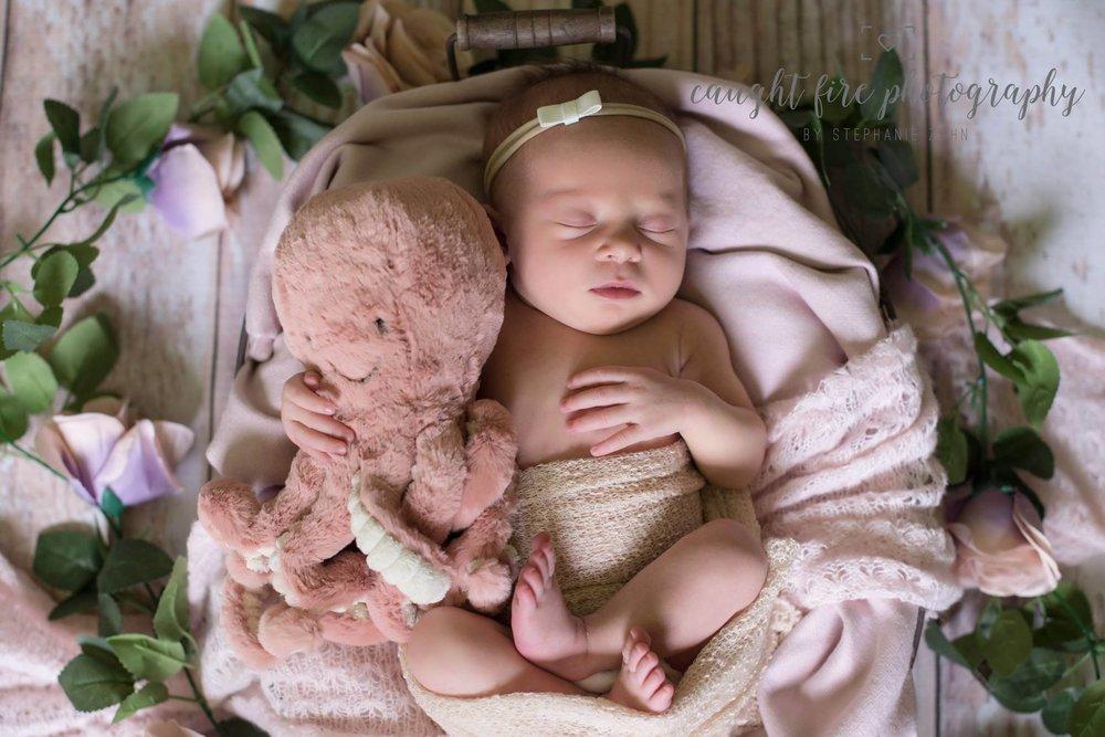 Newborn Portrait 2.jpg
