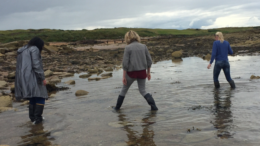 Jo and her friends, seaweed harvesting in Scotland
