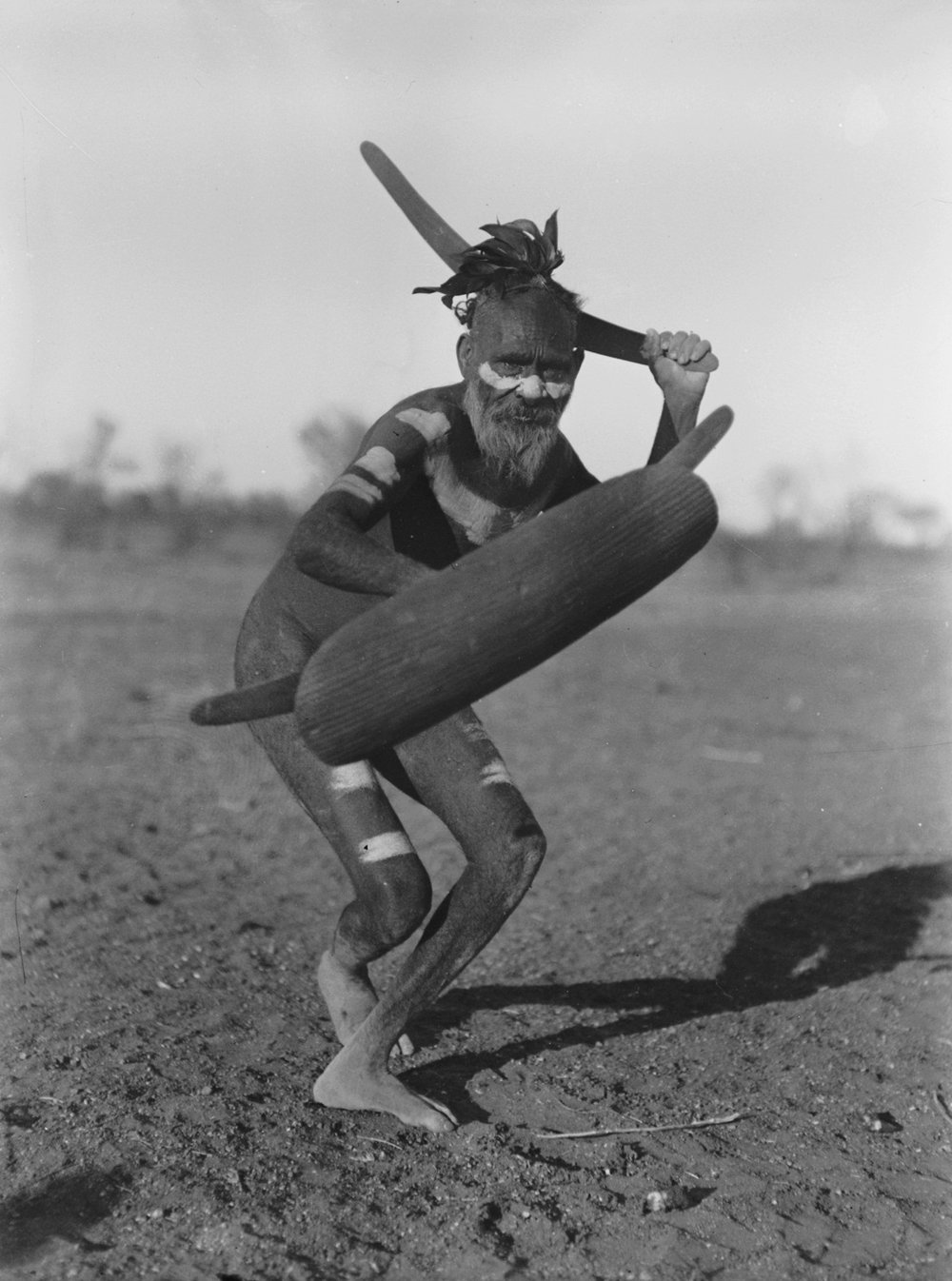 Aboriginal warrior from central Australia  by Herbert Basedow