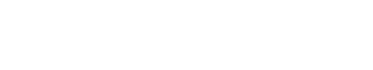 The Go Store