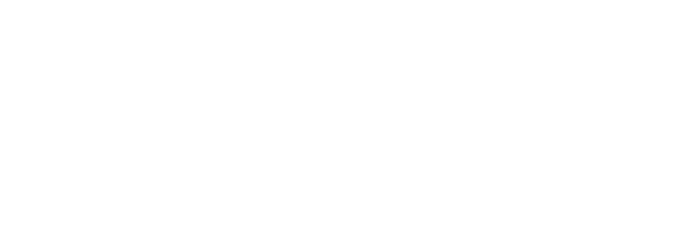 free the bird workshop.png