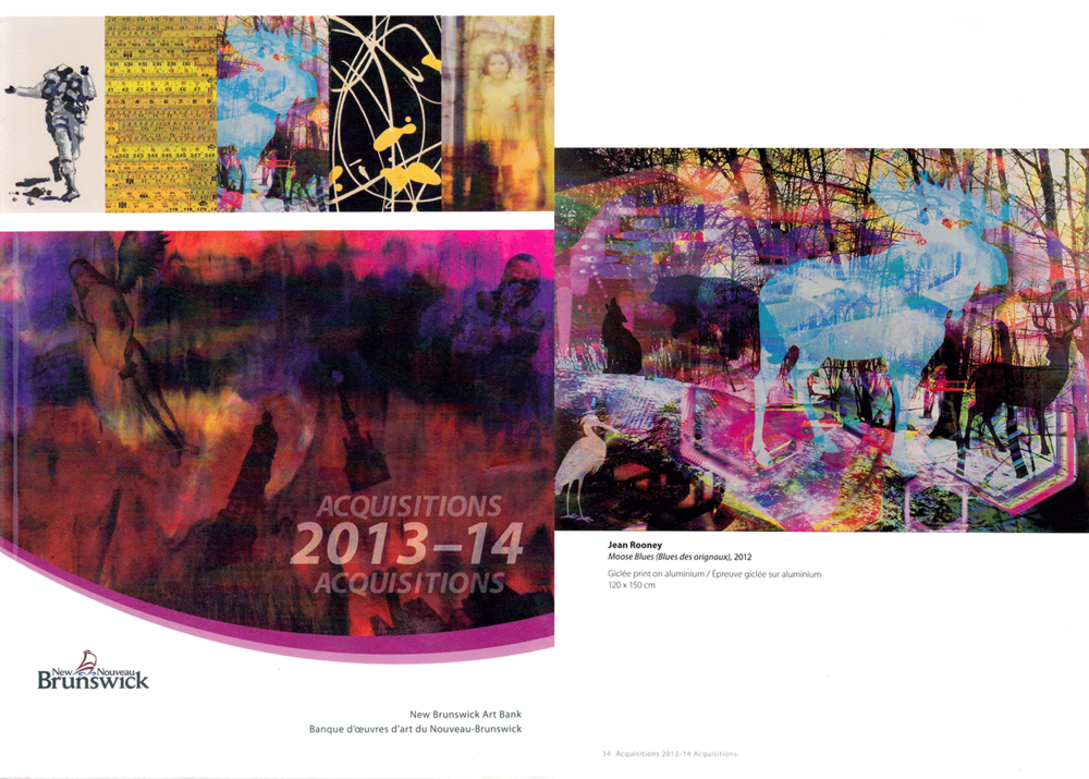 Acquisitions-New-Brunswick-Rooney-2013.png
