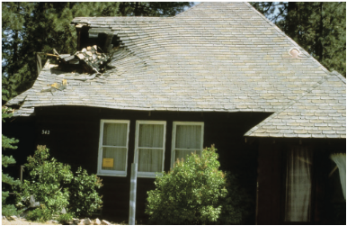 Figure 4: Chimney collapsed and fell through the roof after the 1992 Big Bear City earthquake. Source: FEMA 74, see link below