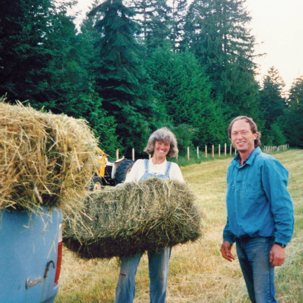 Lisa and John throwing hay bales back nearer the beginnings of the farm.