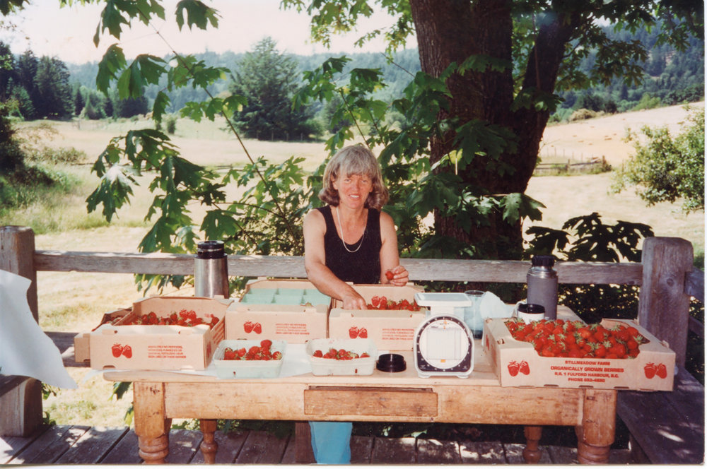 Lisa in a prior life, the islands Queen of U-Pick strawberries.