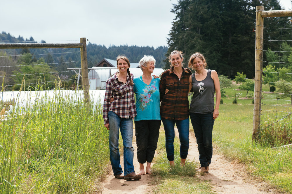 Left to right: Liz, Lisa, Haidee and Jen.