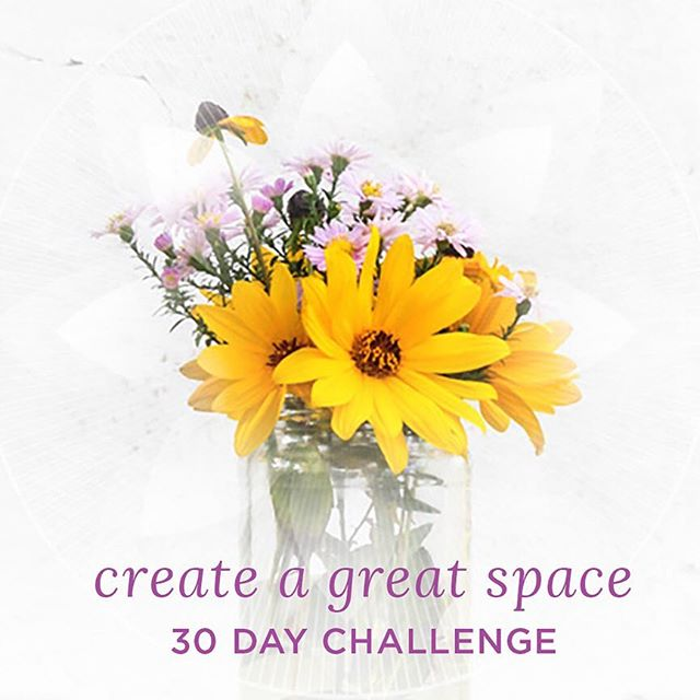 The new year is a great time to declutter and make room for the new! If that resonates and you would like some support, head over to our website (link in bio) and join the free 30 day 'Create a Great Space' challenge!  #declutter  #happyhomehappylife  #oraclecards  #oracledeck #tarotdeck