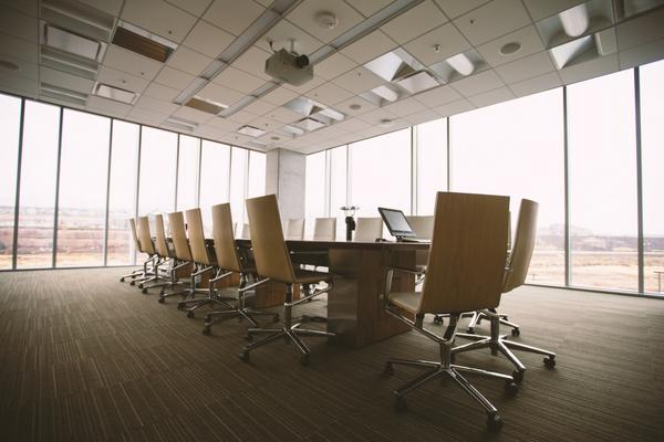 Vizsla Board of Directors