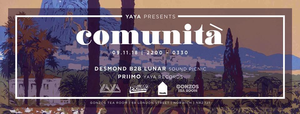 Comunita-yaya-sound-picnic-nottingham-norwich-house-music.jpg